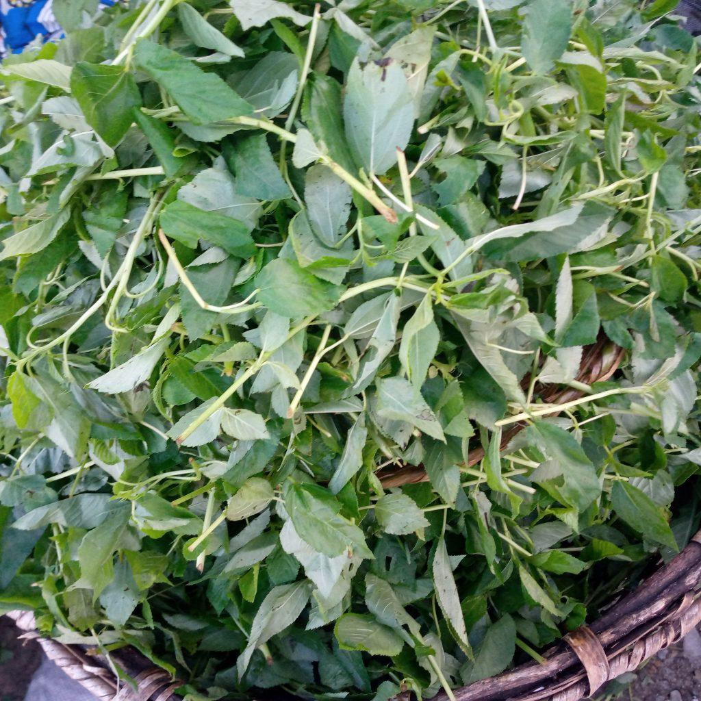 Sauce Crincrin ou Sauce Ninouwi ou Sauce Adémé - 2 - ©Visiter le Bénin